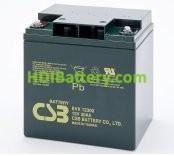 Bateria de Plomo EVX-12300 CSB 12 Voltios 30 Amperios